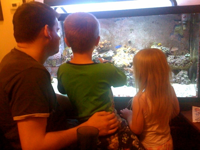 Checking out the fish tank.